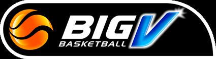 BigV_logo-425×117